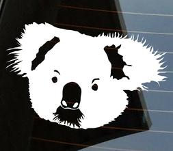Cute koala Funny Australian Animals Driving licence drop bea