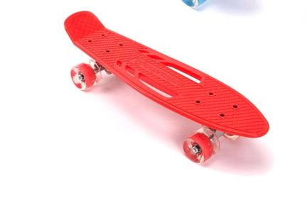 22' Inch Skateboard with