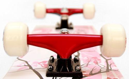 Punisher Skateboards 9001 Blossom Complete 31-Inch